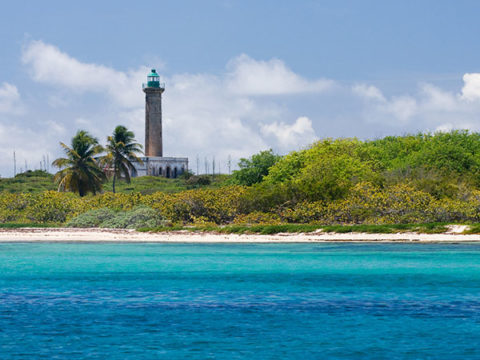 Nos lieux préférés en Guadeloupe